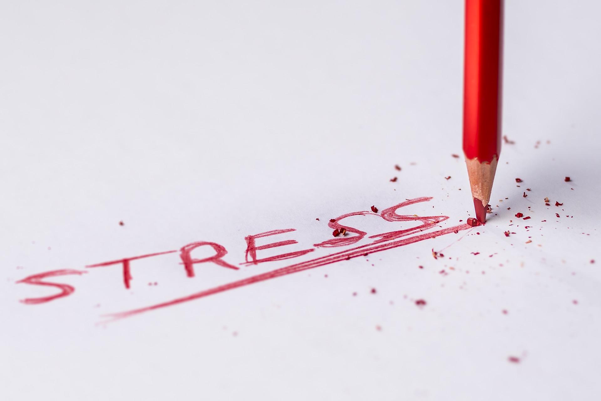 cursus stress lauwersoog