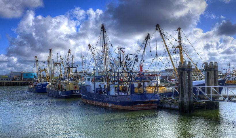 havenverordening lauwersoog